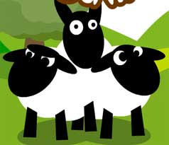 SheepSS