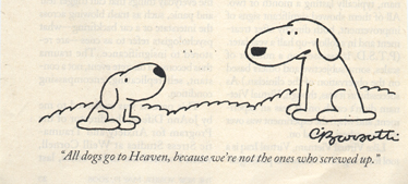 Dogsheaven