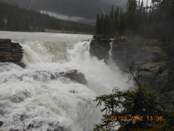Photos from Jasper national park