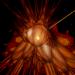 Fractal-1716678__340