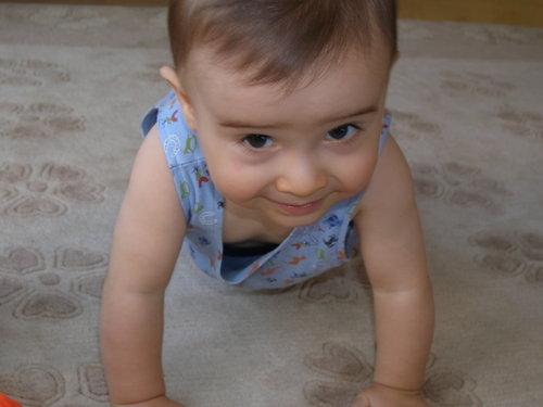 Fritz Crawling