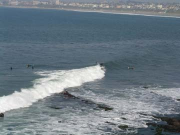surfingmalagacove.JPG